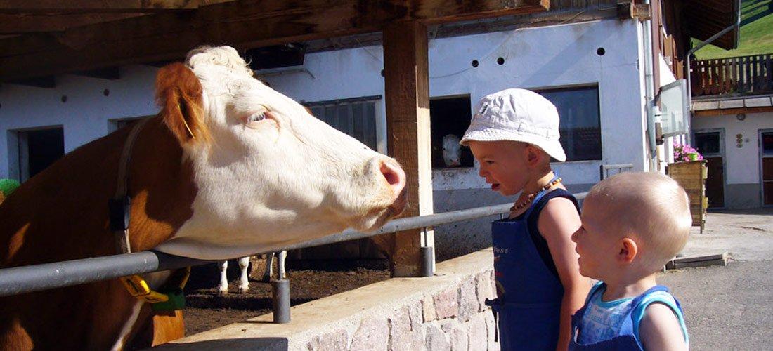 Familien Urlaub auf dem Bauernhof - Kastelruth / Südtirol