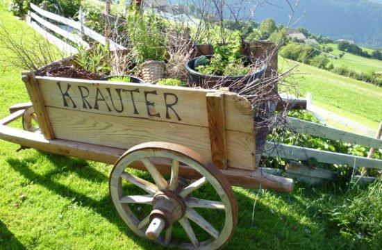 Urlaub am Bauernhof Frühstück hofeigene Produkte Südtirol(2)