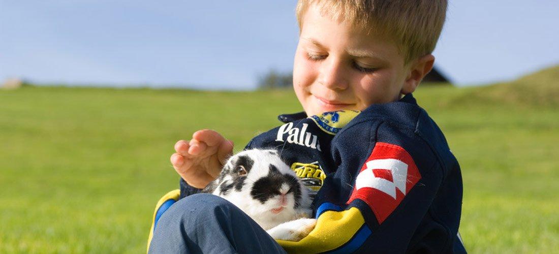 Meine kleine Farm - Was Kinder von Tieren lernen können