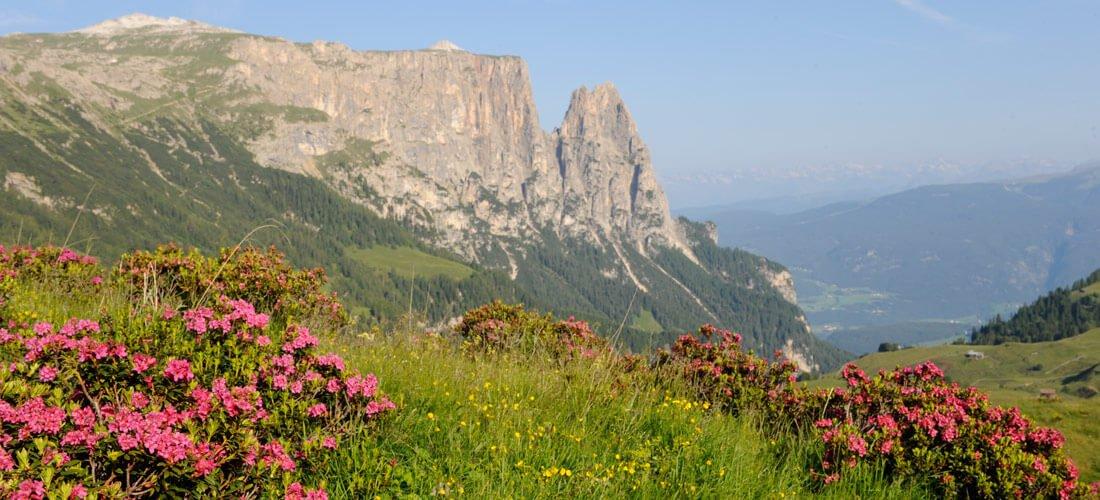 Escursioni senza limiti nei dintorni di Castelrotto